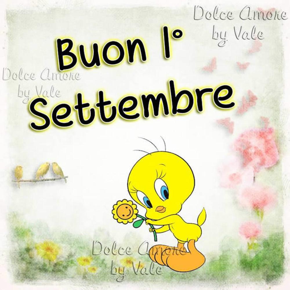 benvenuto-settembre-14